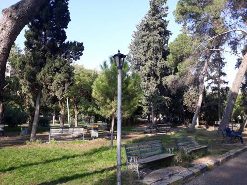 Park Centralny / Central Park of Aleppo