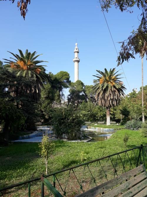Park Centralny / Central Park of Aleppo