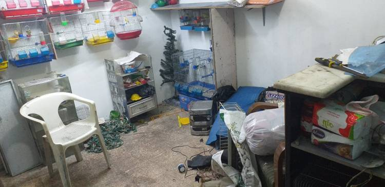 """""""Daj Pracę!"""" - kupujemy narzędzia elektryczne dla Georga z Aleppo!"""